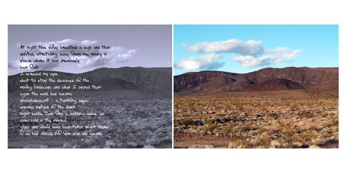 At night the desert changes.jpg