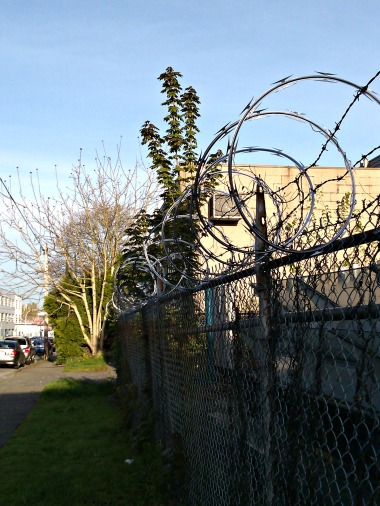 Heading into the industrial neighbourhood so denoted by razorwire.