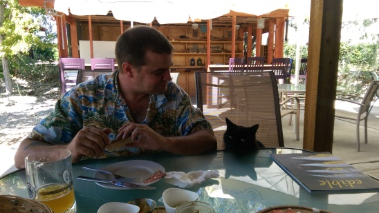 Brian and the cat sharing a chat over lunch at the Crowsnest Winery.