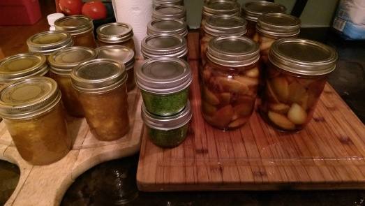 Canning frenzy: plums in port, peach-cardamom jam and basil pesto for the freezer.